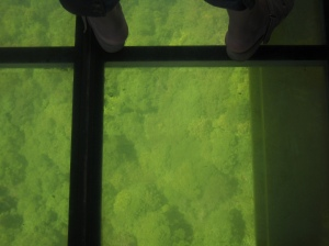 Glass Floor on the Sky Bridge