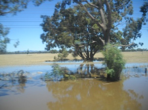 farm land under water - pic one