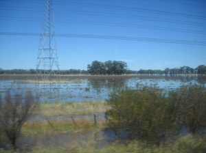 farm land under water - part two