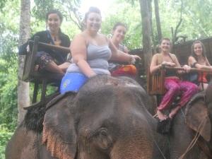 The spice girls meet the elephants