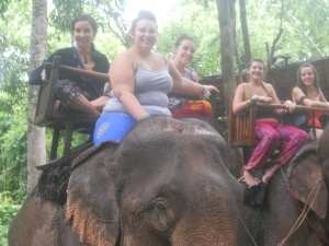 The spice girls meet the elephants