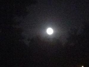 Full Moon - Friday the 13th